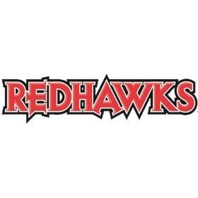 RedHawks Softball 10u/12u/14u/16u/18u Tryouts (Illinois
