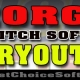 Georgia Fastpitch Softball Tryouts